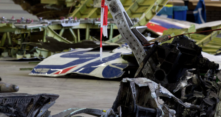 Restos del avión malasio derribado en el este de Ucrania