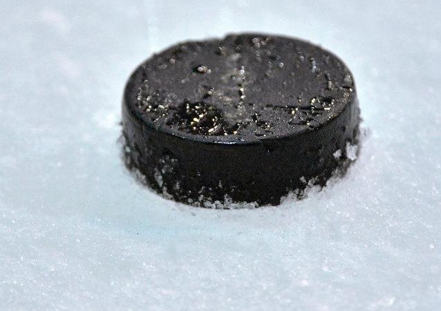 Dos entrenadores rusos de hockey sobre hielo, multados y descalificados por pelea