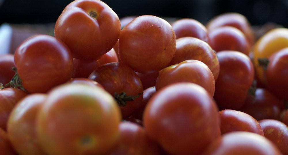 Rusia no prevé levantar aún el veto agroalimentario a la UE, dice vice primer ministro