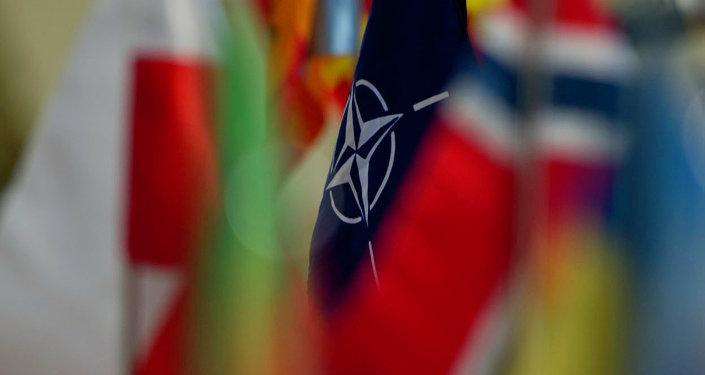 Eurodiputado dice que es preocupante que la OTAN ponga en la punta de mira a Sputnik y RT