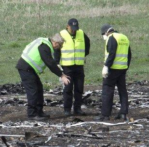 Se da por concluida la recogida de fragmentos del MH17 en Donbás