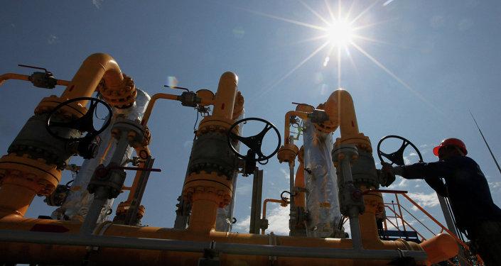 Bolivia invita a presidente ruso Putin a Foro de Países Exportadores de Gas