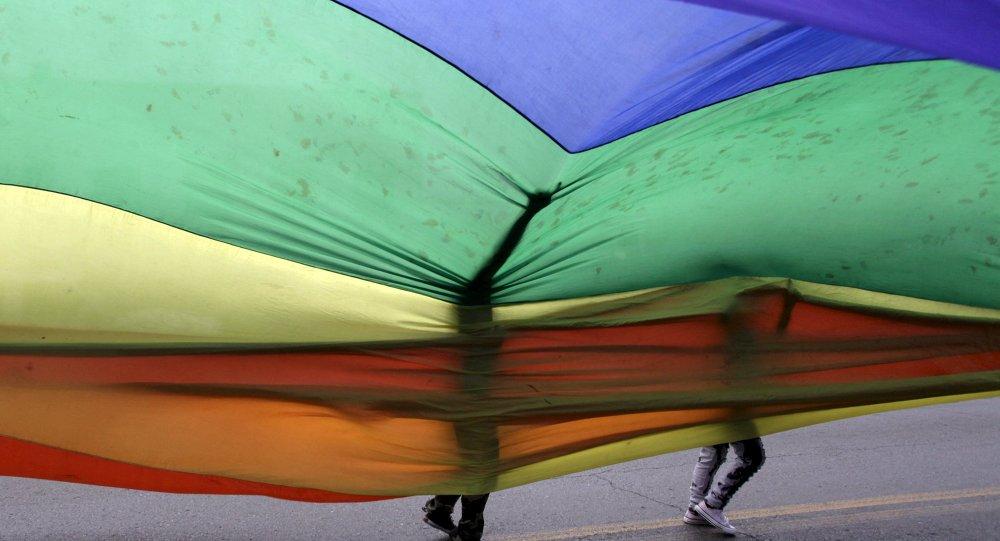 LGBT de Bolivia piden legalizar parejas homosexuales
