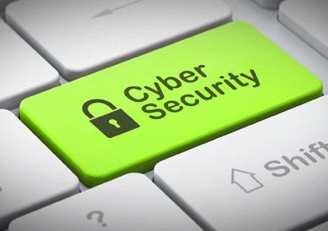 Seguridad cibernética