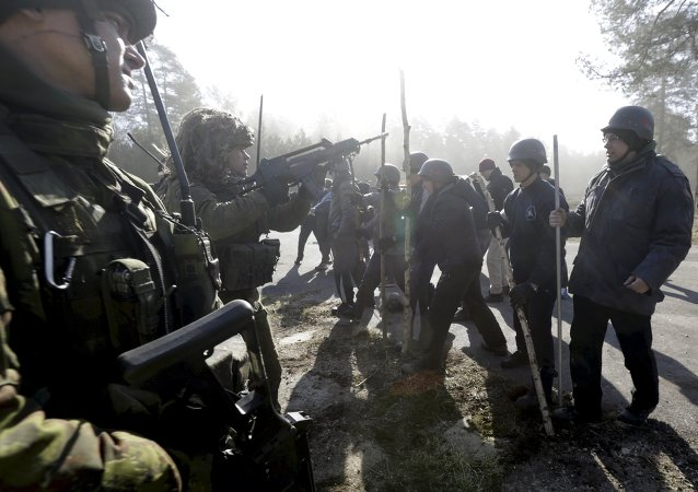 Fuerza de reacción rápida del Ejército de Lituania