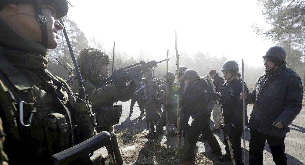 Fuerzas de reacción rápida del Ejército de Lituania