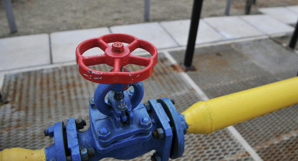 Consumidores de gas en Ucrania pagan por la postura de Kiev, dice Nóvak
