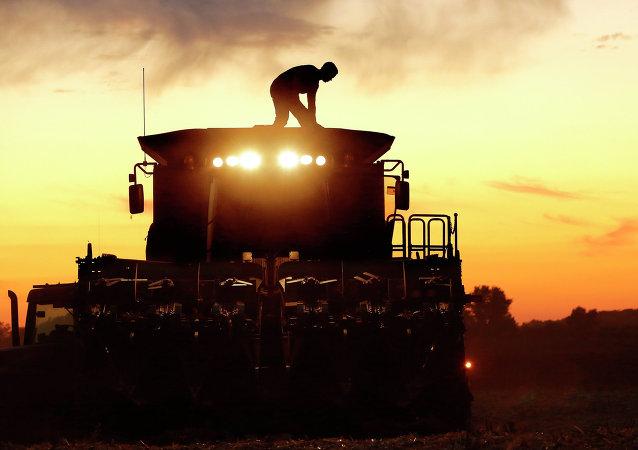 Un agricultor de maíz, en Pleasant Plains, Illinois