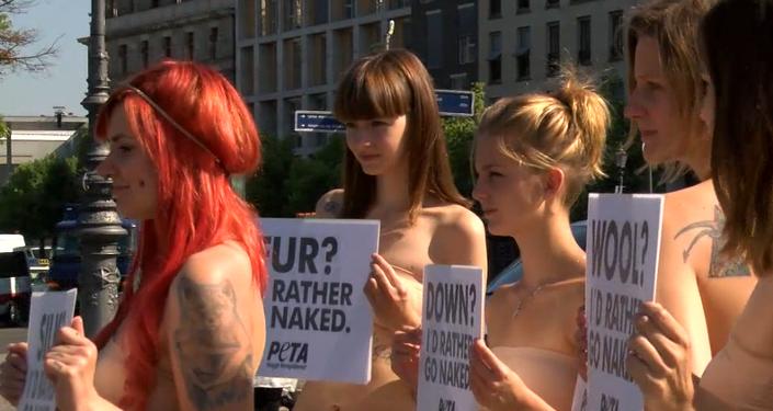 Activistas de PETA se desnudan en Berlín