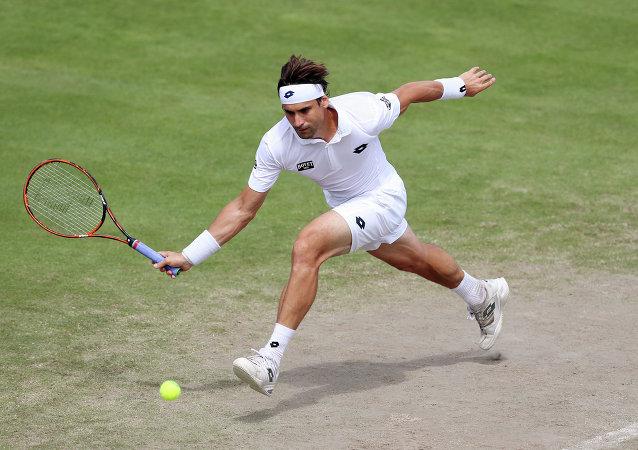 David Ferrer, tenista español