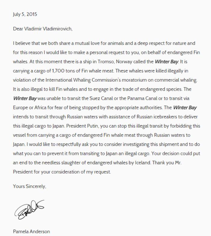 Carta abierta al presidente de Rusia, Vladímir Putin