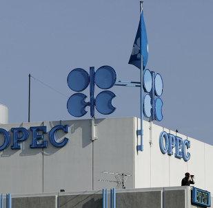 La OPEP desarrollará un formato de consultas permanente con los países no miembros