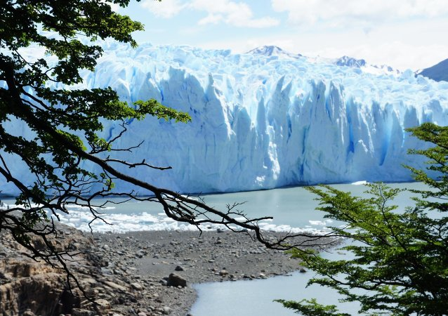 Glaciar Jorge Montt