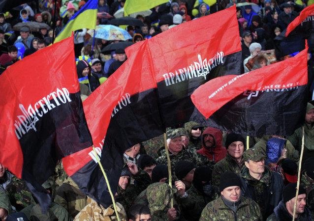 Banderas de Pravy Sektor