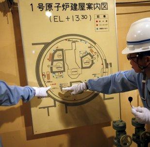 Japón busca nuevas fuentes de combustible tras accidente en Fukushima
