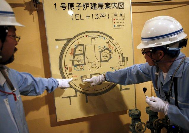 Empleados de Kyushu Electric Power (archivo)