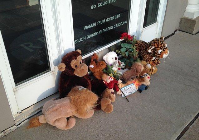 Homenaje al león Cecil cerca de la consulta dental de Walter Palmer, en Minneapolis