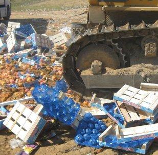 Destrucción de alimentos embargados