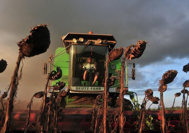 Agricultor recoge la cosecha en la provincia de Buenos Aires