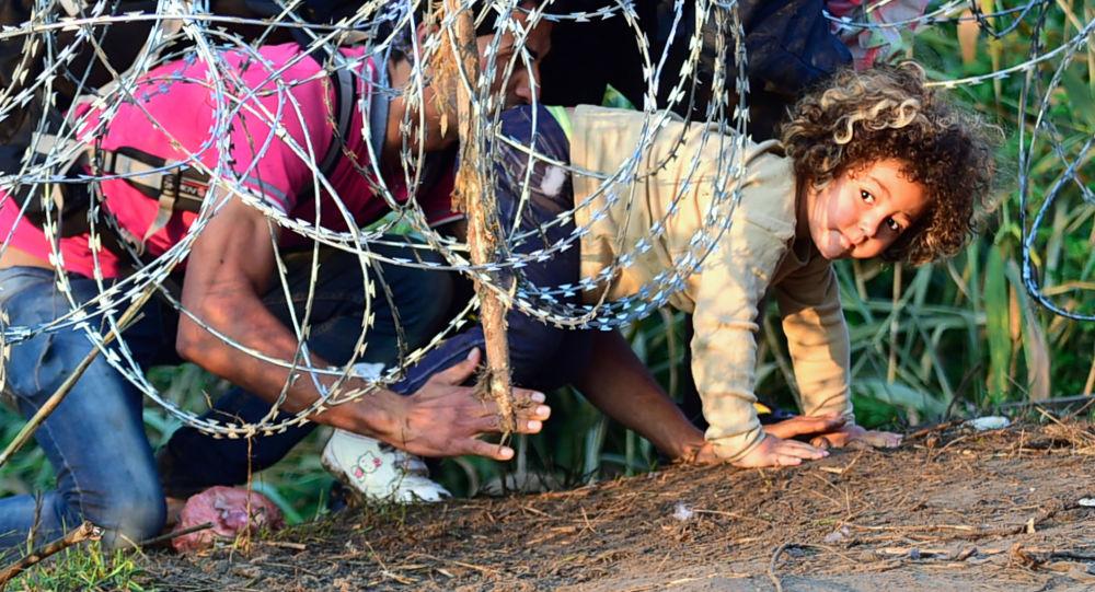 Migrantes cerca de la frontera húngaro-serbia