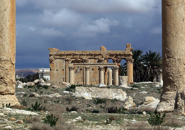 Palmira (Archivo)