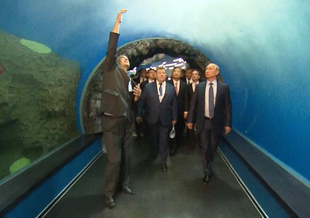 Putin visita un oceanográfico