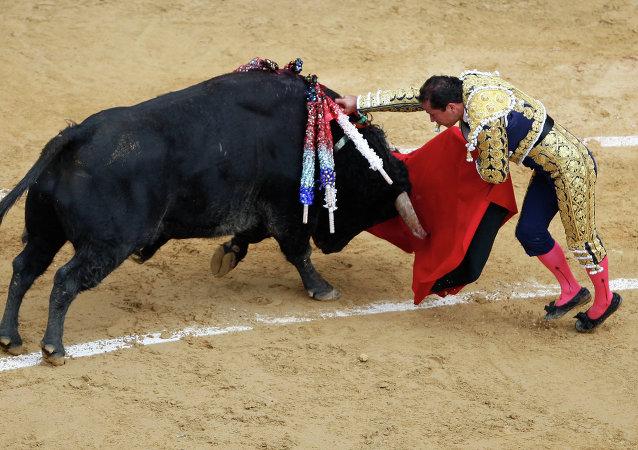 Corrida de toros en Bogotá (archivo)