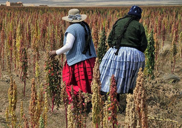Mujeres campesinas bolivianas