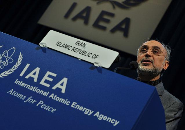 Alí Akbar Salehi, presidente de la Organización de la Energía Atómica de Irán (Archivo)