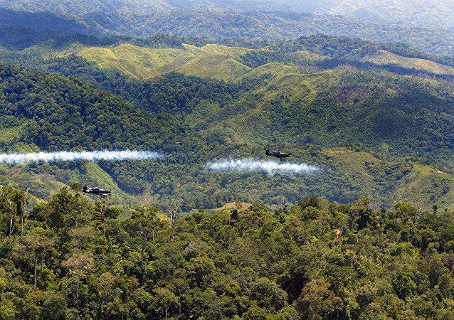 Fumigación aérea contra la coca