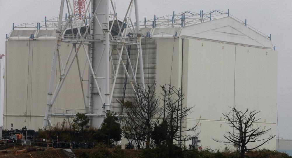 Cámara-robot realiza revelador hallazgo en ruinas de central nuclear de Fukushima