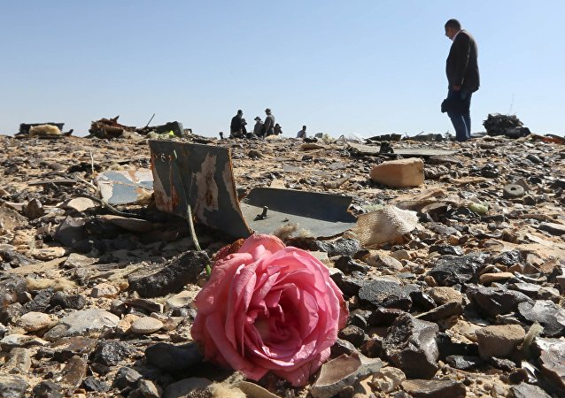 Flor en los restos del avión ruso Airbus-321 siniestrado en Egipto