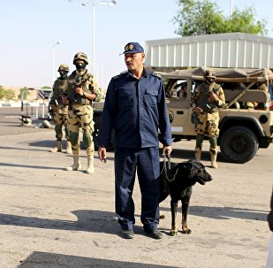 Policía inspecciona la seguridad en el aeropuerto de Sharm el Sheikh