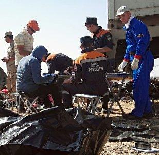 Rescatistas del Ministerio de Emergencias de Rusia en el lugar del siniestro del A321 en Egipto