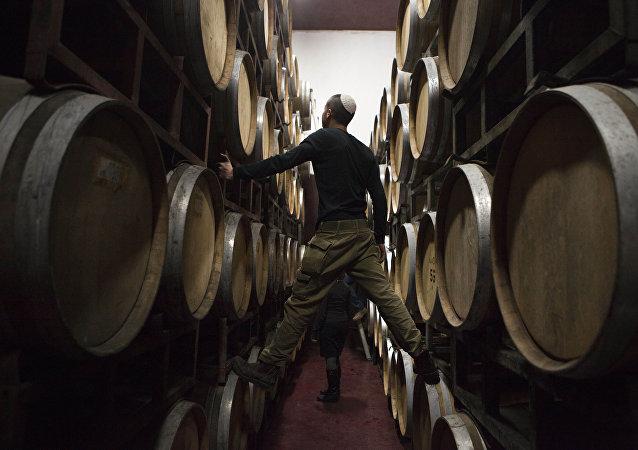 Barriles de vino en una bodega en Palestina