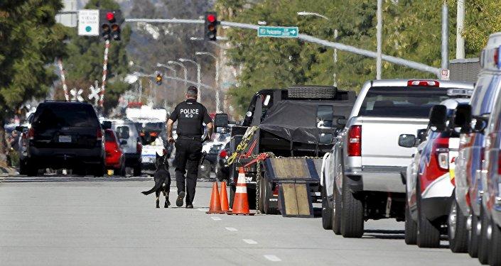 Policía de San Bernardino (archivo)