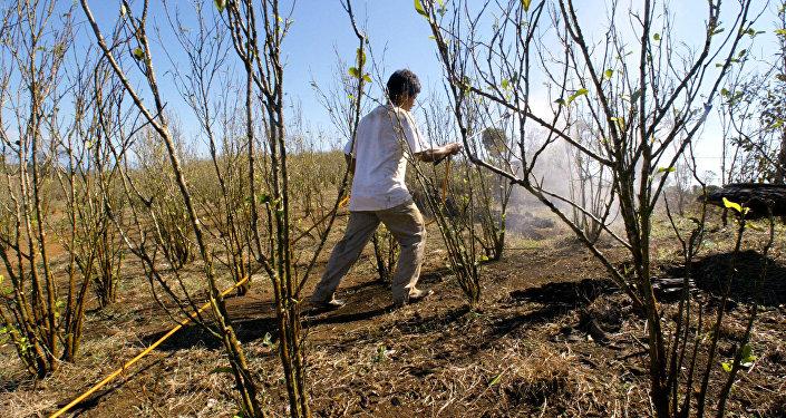 Colombia, el país con más conflictos ambientales