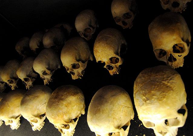 Cráneos (archivo)