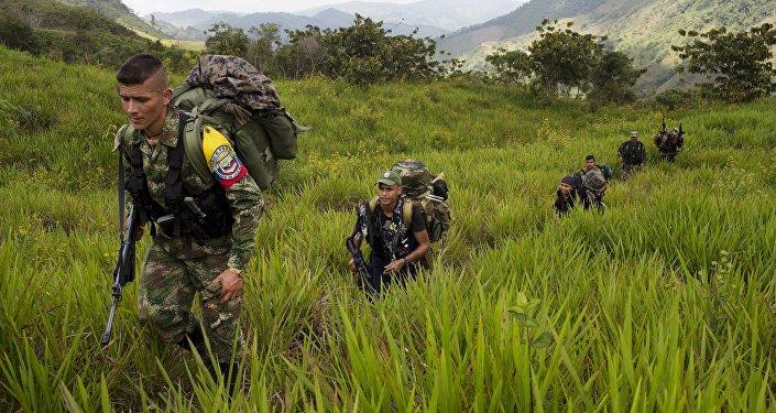 Militantes de las FARC (Archivo)