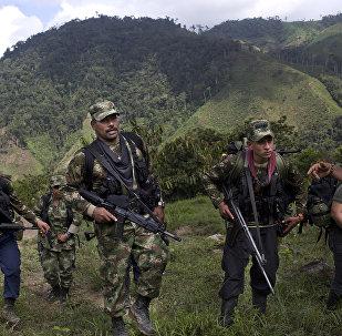 Militantes de las FARC