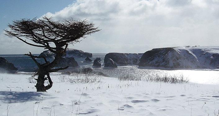Una de las islas Kuriles, Shikotan