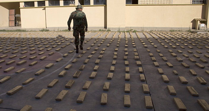 Marihuana incautada en Bolivia (Archivo)