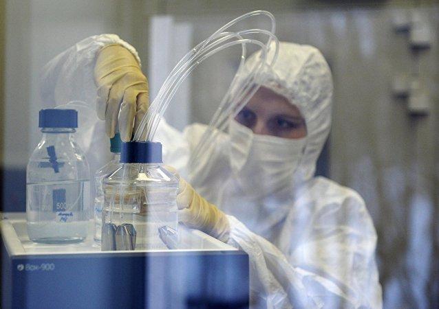 Rusia estudia iniciar pruebas clínicas de fármacos contra el zika