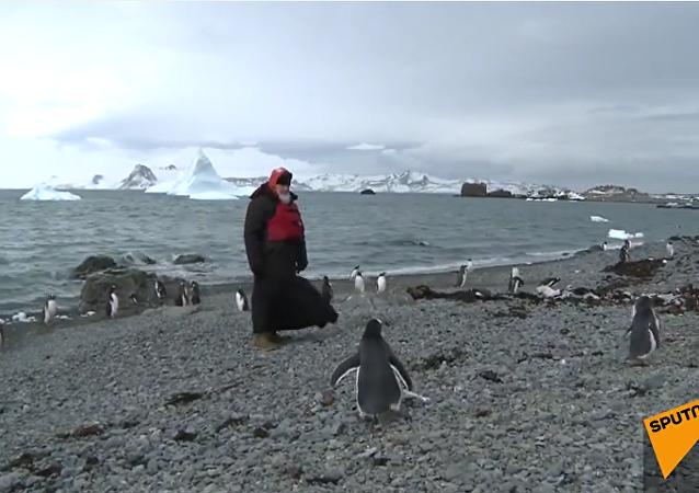 Patriarca Kiril visita a los pingüinos en la Antártida