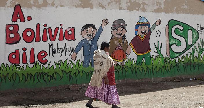 Una mujer boliviana (archivo)