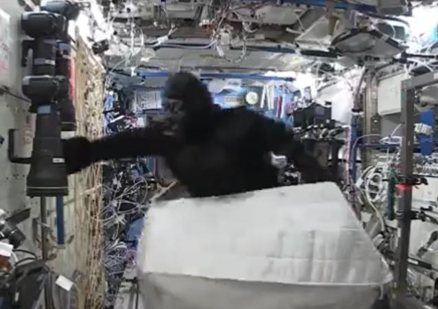 Un gorila causa alboroto en la Estación Espacial Internacional