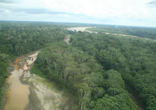 Amazonia, Perú