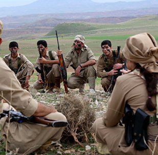 Miembros de las milicias kurdas en el norte de Irak