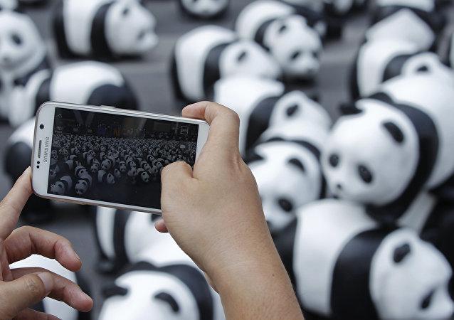 Esculturas de panda