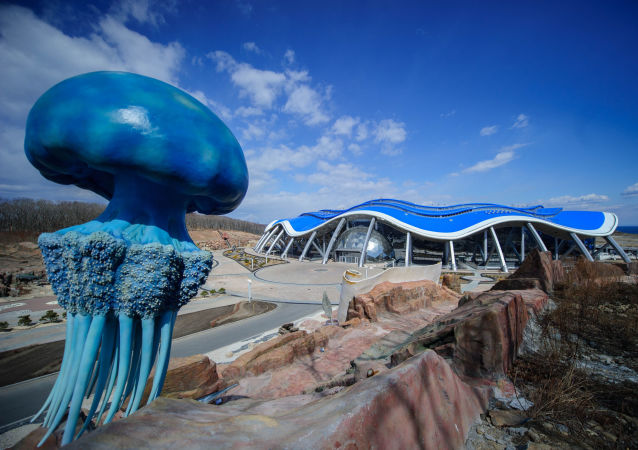 Acuario de Primorie: Uno de los más grandes del mundo